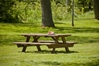 Picture of 6 ft. Rectangular Recycled Plastic Picnic Table, 288 lbs.