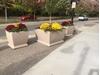 "48"" Square Concrete Planter, 1700 Lbs."