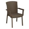 Havana Classic Plastic Resin Stackable Armchair